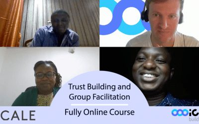 In Collaboration with 2SCALE – Lessons learned from our first fully online course
